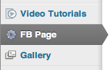 FB Page on WordPress Admin Menubar