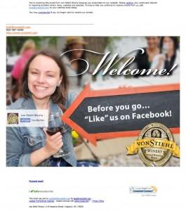 von-Stiehl-Welcome-Email-after
