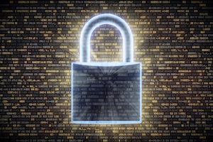 Managed Web Hosting - Make Sure It's Secure