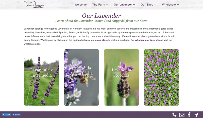 Lavender Farm Website