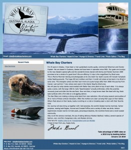 Whale Bay Charters New Web Site